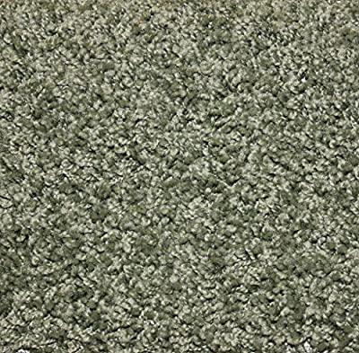 "Sage Area Rug Carpet. MULTIPLE SIZES, SHAPES and COLORS TO CHOOSE FROM. Home area rugs, runner, rectangle, square, oval and round. Hem-stitching on all four sides. 25 oz. Face Weight. 1/2"" Thick. Polyester. Loose and Soft Frieze."