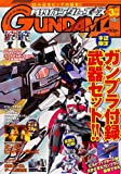 GUNDAM A (ガンダムエース) 2014年 03月号 [雑誌]