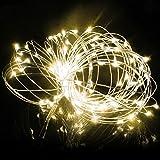 SAVFY Ghirlanda luminosa a batterie, a tenuta stagna, in rame, in filo 3M-Catena 30 luci LED, Decorazione di Natale /Festa /Sera /Anniversario /Casa /Ristorante /Giardino /Bar/ Albero/Compleanno, Bianca Calda