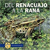 del Renacuajo a la Rana (de Principio a Fin (Start to Finish)) (Spanish Edition)