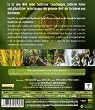 Image de Die Tricks der Pflanzen [Blu-ray] [Import allemand]