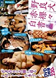 SM-ZV037 野良犬赤裸々白書 [DVD]