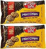 Enjoy Life Semi-sweet Chocolate Mini Chips -- 10 oz