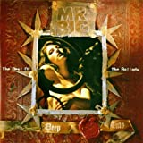 Mr Big Deep Cuts: The Best Of The Ballads