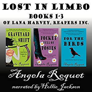Lost in Limbo Audiobook
