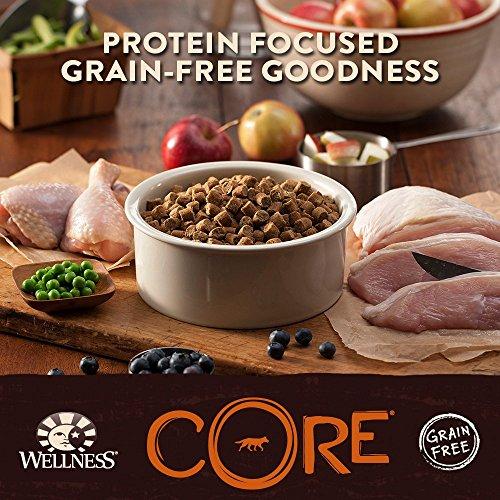 Wellness CORE Grain Free Original Turkey & Chicken Natural Dry Dog Food, 26-Pound Bag_Image5
