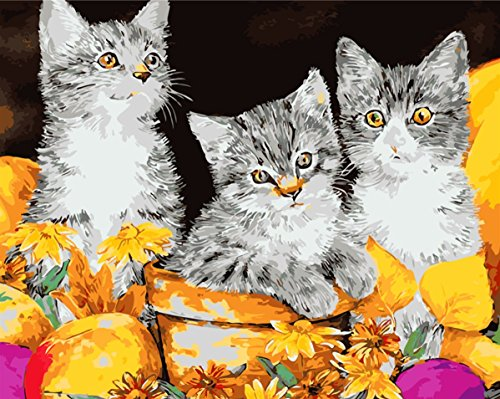 Paint by Number Kits - Three Cute Cat 16*20 inches