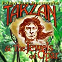 Tarzan and the Jewels of Opar Audiobook by Edgar Rice Burroughs Narrated by David Stifel