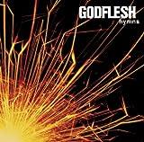 Hymns (Special Edition) Godflesh