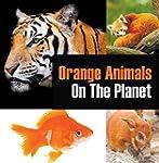 Orange Animals On The Planet: Animal...