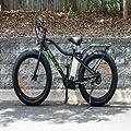 Electric Fat Cat XL Mountain Bike