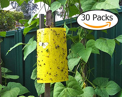 Trapro 30-Pack Yellow Sticky Fly Insect Traps for Fungus Gnats, Aphids, White flies, Leaf miners, Thrips, other Flying Plant Insects - 6x8 Inches, Twist Ties Included (8 Twist Ties compare prices)