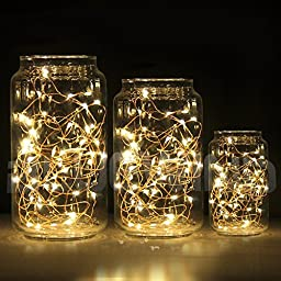 BlueWind 2PC LED Starry Novelty Christmas String Lights,Decor Rope Flexible Copper Wire with 10ft,30leds AA Battery Powered for Outdoor and Indoor Environments,wedding,christmas Party (Warm White)