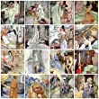 Anne Anderson Vintage Fairy Tale Tiles Collage Sheet # 101