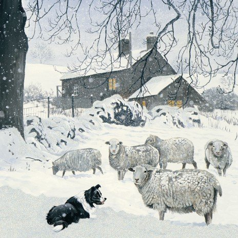 Winter Shepherd Border Collie & Sheep Luxury Christmas Cards Pack