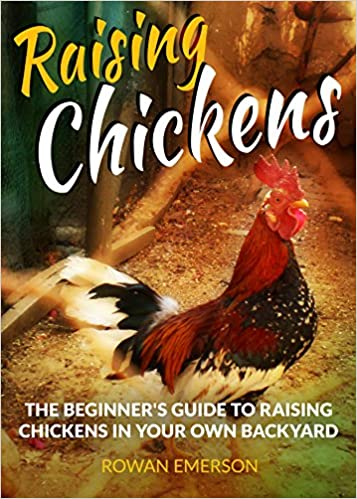 Raising Chickens: Backyard Chickens: The Beginner's Guide to Raising Chickens in Your Own Backyard (Self Sufficiency, Homesteading, Living Off the Grid) ... Sufficiency and Homesteading Guides Book 1)