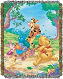 Disney, Winnie the Pooh, Sweet Summer Day 48-Inch-by-60-Inch Acrylic Tapestry Throw by The Northwest Company