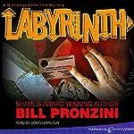 Labyrinth: The Nameless Detective, Book 6   Bill Pronzini