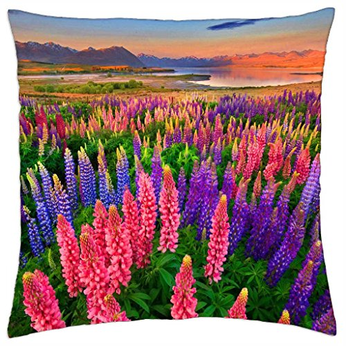 delight-throw-pillow-cover-case-18-x-18