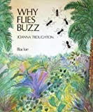 Why flies buzz: A Nigerian folk tale (021689655X) by Troughton, Joanna