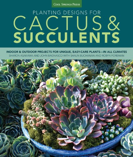 planting-designs-for-cactus-succulents-indoor-and-outdoor-projects-for-unique-easy-care-plants-in-al