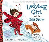 img - for Ladybug Girl and the Big Snow book / textbook / text book