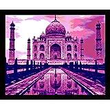 10 Am Taj Framed Wall Art (Pink) (With Glass)