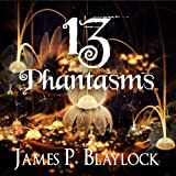 img - for 13 Phantasms book / textbook / text book