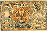 img - for The Freddie Stories book / textbook / text book