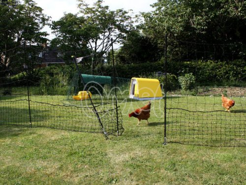 Omlet Chicken Netting - 21 metres - Inc. Gate and Double Spike Poles