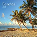 Avalanche January to December, 12 x 24 Inches, Perfect Timing Beaches 2015 Wall Calendar (7001603)