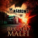 The Narrows Audiobook by Ronald Malfi Narrated by David Stifel