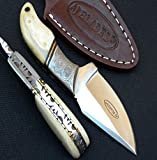 AJ101 Custom Knife | Camel Bone Handle | Damascus Bolster | Stainless Steel