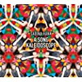 A Song Kaleidoscope