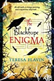 Teresa Flavin The Blackhope Enigma