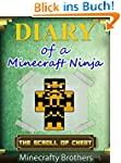MINECRAFT: Diary of a Minecraft Ninja...