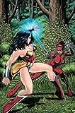 Manhunter Vol. 4: Unleashed (DC Comics)