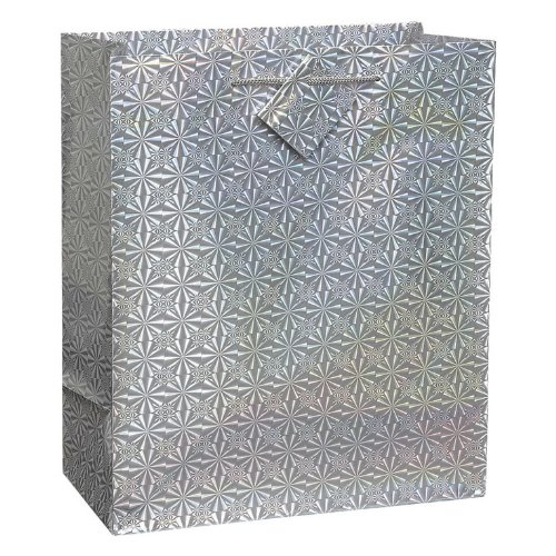 Holographic Gift Bags 13-Inch by 18-Inch, 6/Pkg-Glossy
