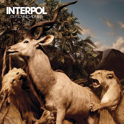 Interpol - The Scale Lyrics - Lyrics2You