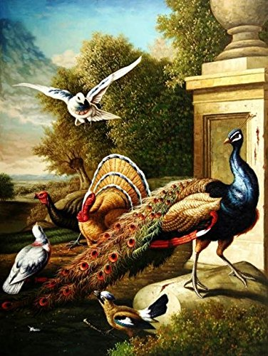 'Peacock,Turkey And Birds' Oil Painting, 16x21 Inch / 41x54 Cm ,printed On High Quality Polyster Canvas ,this Amazing Art Decorative Prints On Canvas Is Perfectly Suitalbe For Kitchen Decoration And Home Decor And Gifts