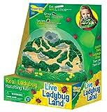 Insect Lore Ladybug Land