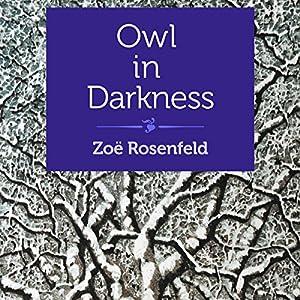 Owl in Darkness Audiobook