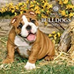 Bulldogs American Kennel Club 2016 Wa...