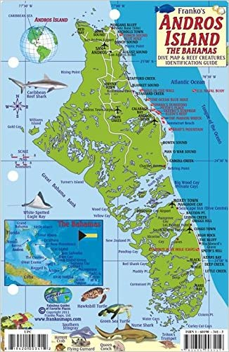 Andros Island Bahamas Dive Map & Reef Creatures Guide Franko Maps Laminated Fish Card