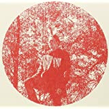 Heartlandpar Owen Pallett