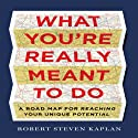 What You're Really Meant To Do: A Road Map for Reaching Your Unique Potential Audiobook by Robert Steven Kaplan Narrated by Wes Talbot