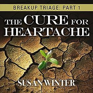 Breakup Triage Audiobook