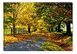 Startonight Canvas Wall Art Warm Colors on a Country Landscape, Nature USA Design for Home Decor, Dual View Surprise Wall Art 31.5 X 47.2 Inch Original Art Painting!