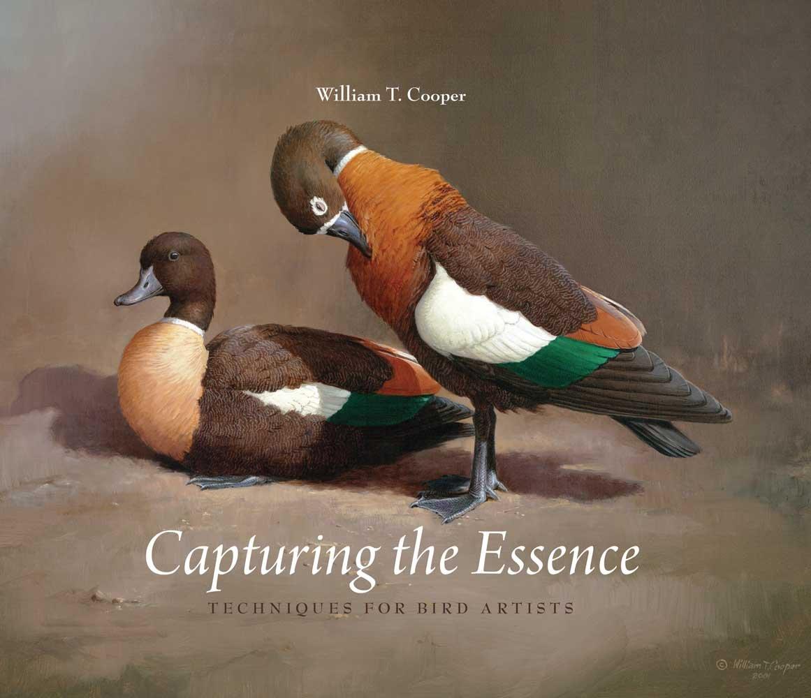 Capturing the Essence of Caricatures - William T Cooper