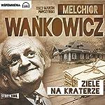 Ziele na kraterze | Melchior Wankowicz